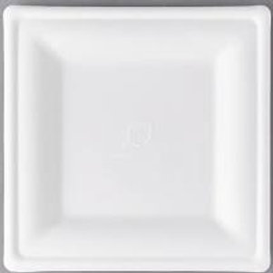 White Square Dinner & Dessert Disposable Plates
