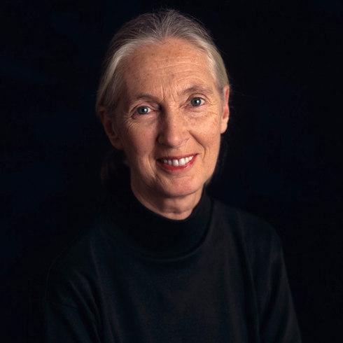 Jane Goodall, 1995