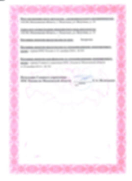Лицензия МЧС2.jpg