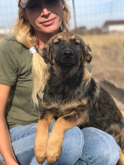 Heidi, born July