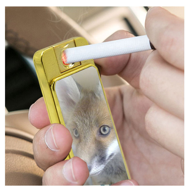 Red Fox Electric USB Rechargeable lighter