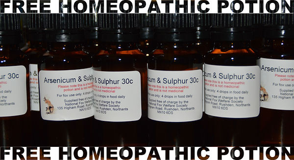 Homeopathic-potion-2.jpg