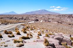 Somewhere - Bolivia