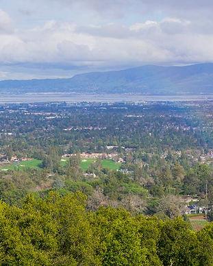 Los Altos 1.jpg