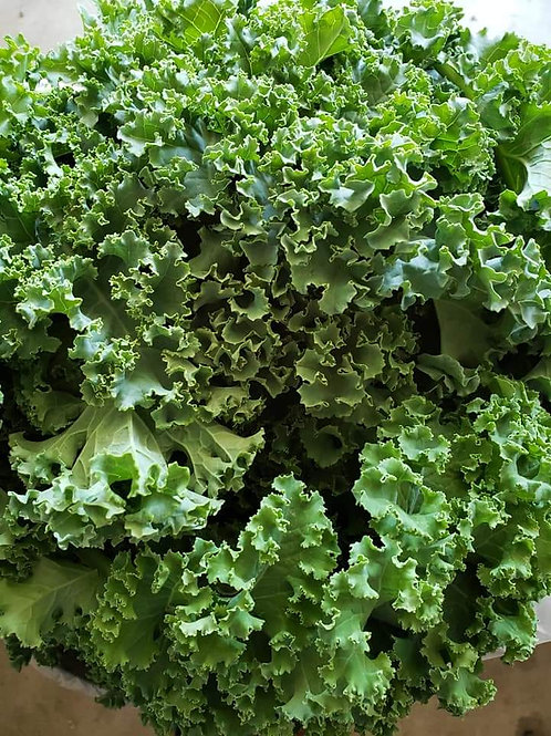 Kale by the pound