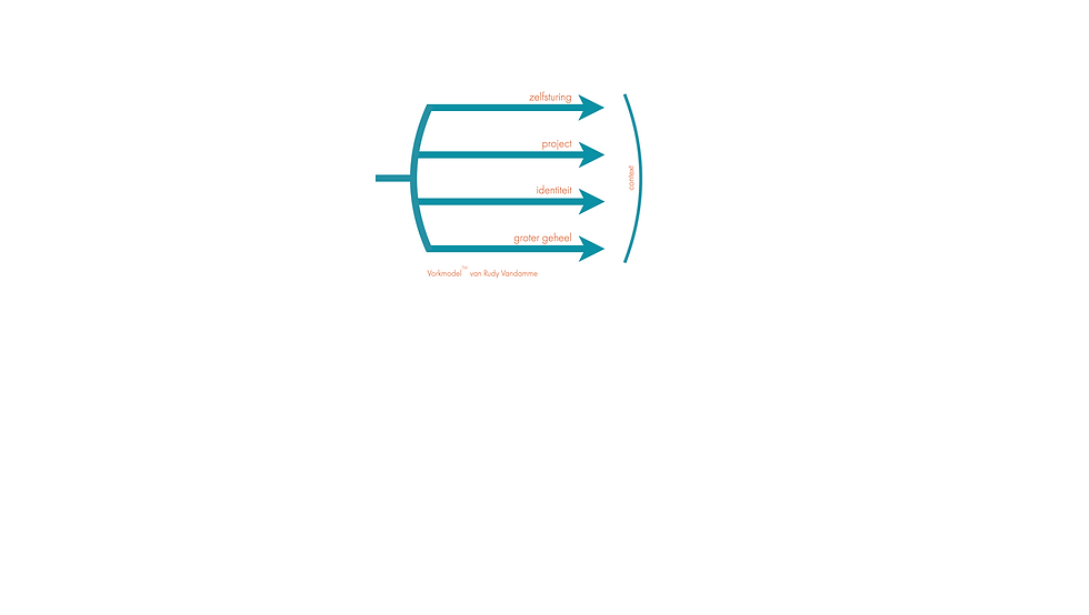 pulse8 ontwikkelingsgerichte coaching vorkmodel