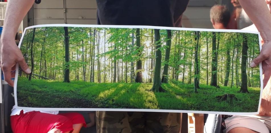 Fine Art Print 90cm X 30cm