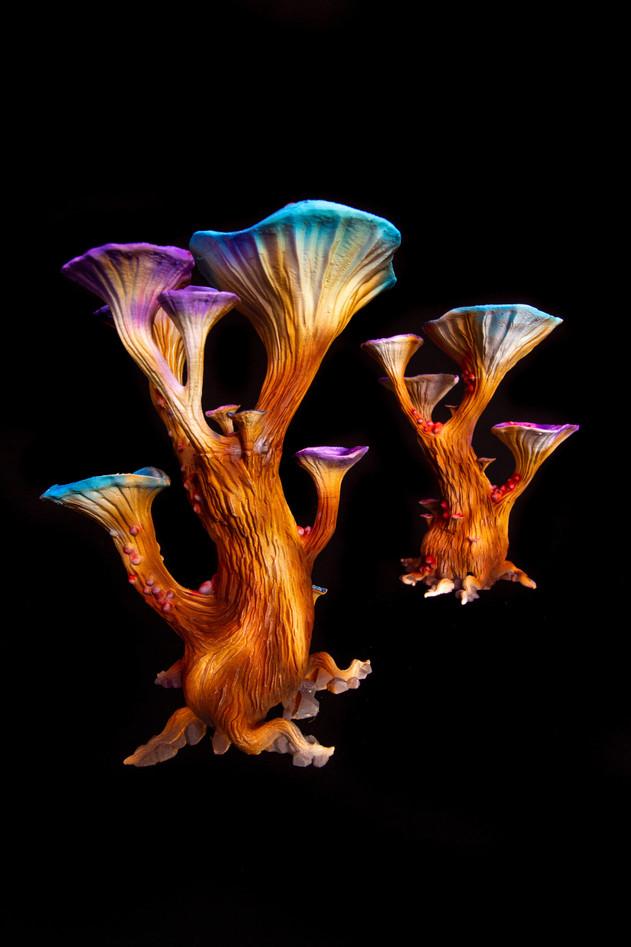 Magic Mushroom Medium LED (3).jpg