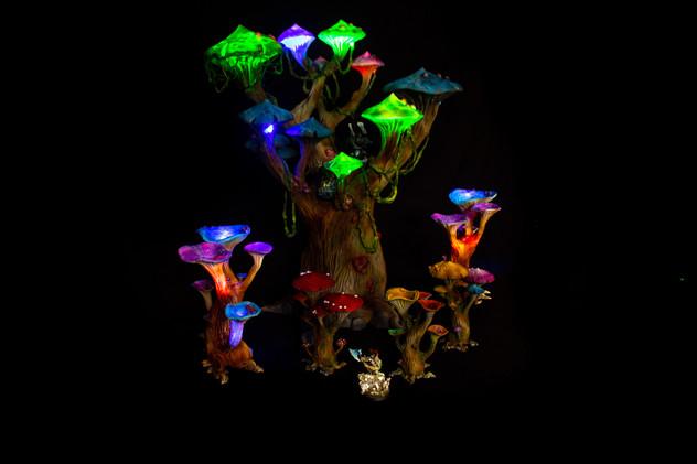Mushroom Forest Small (7).jpg