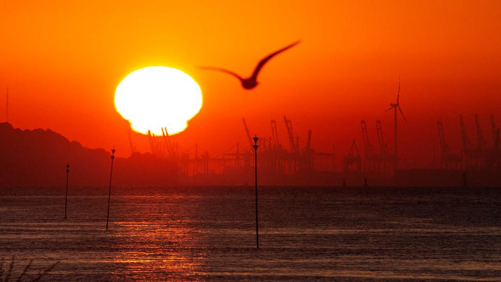 Sonnenaufgang Hamburger Hafen