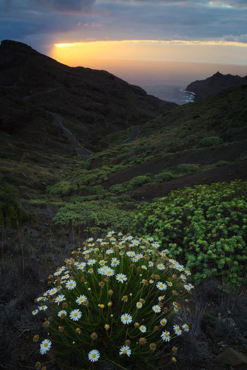 Cloudy sunrise at La Caleta