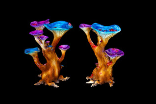 Magic Mushroom Medium LED (2).jpg