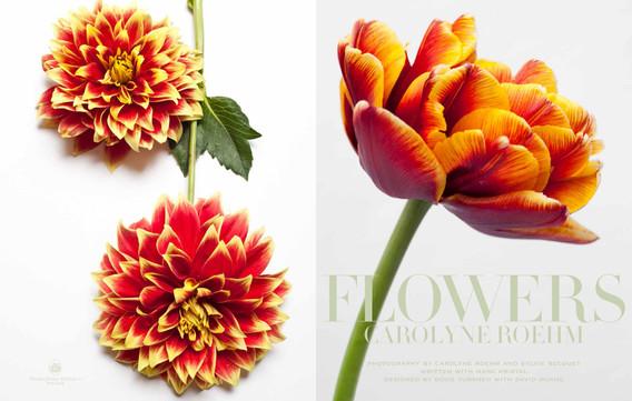 DOUG-TURSHEN-FLOWERS-1.jpg