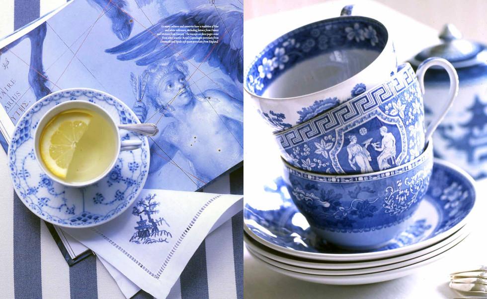 DOUG-TURSHEN-BLUE-WHITE-6.jpg