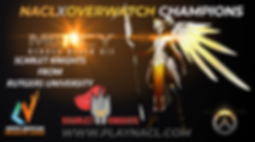 Overwatch Champions