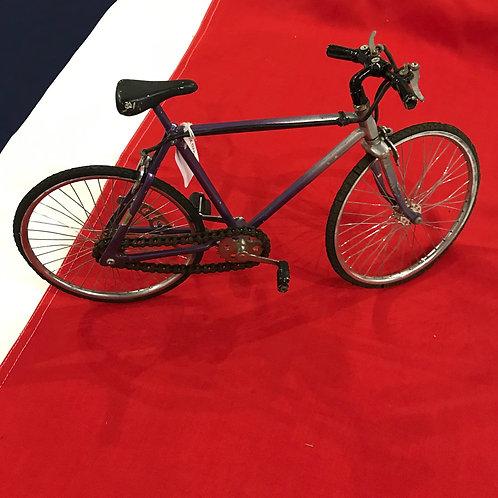 20th Century vintage model bicycle