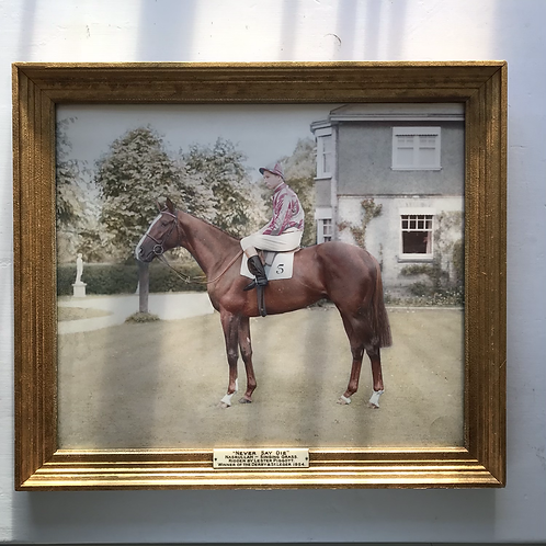 1954 framed colour photograph of Never say die and Lester Piggot