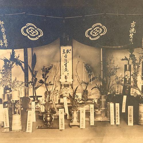 Vintage Japanese Photograph - Ikebana - Japanese flower display competition