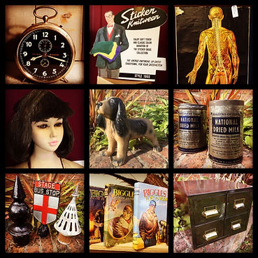 medical prints, biggles, pot dog, antique furniture