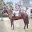 Thumbnail: 1954 framed colour photograph of Never say die and Lester Piggot