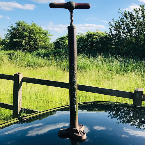 Antique Japanese Stirrup Pump