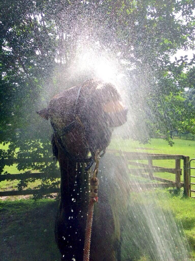 Bath time!!