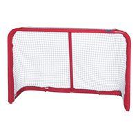 8900 Hockey Goal
