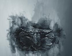 Charcoal Crab Portrait