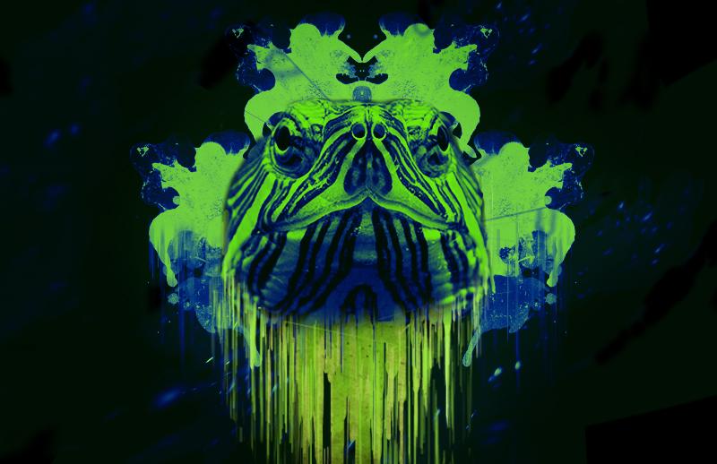 Neon Turtle