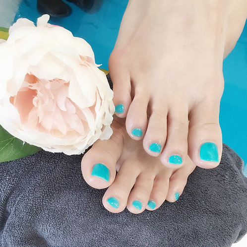 Standard Pedicure with Shellac