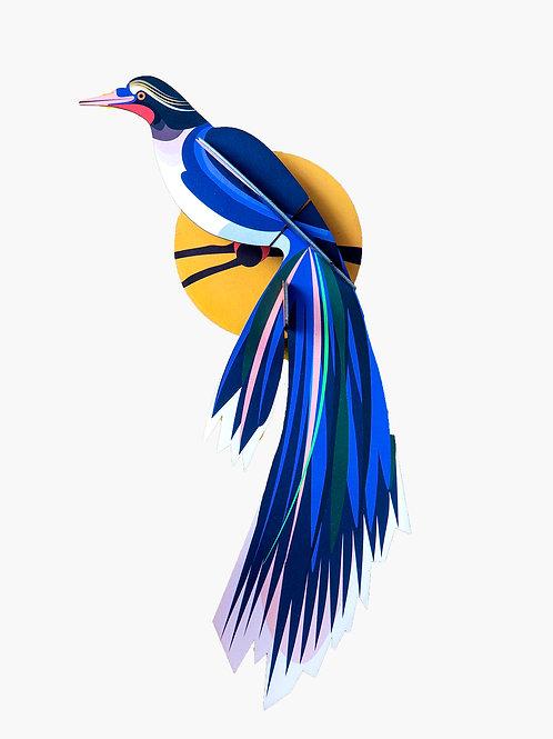 Paradise Bird, Flores