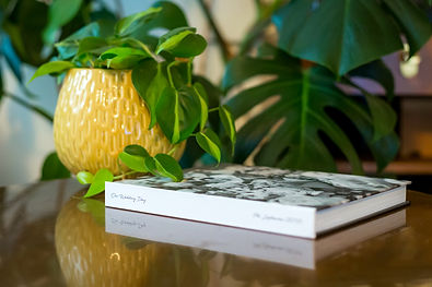 Money plant in a yellow pot next to custom bespoke wedding photo album