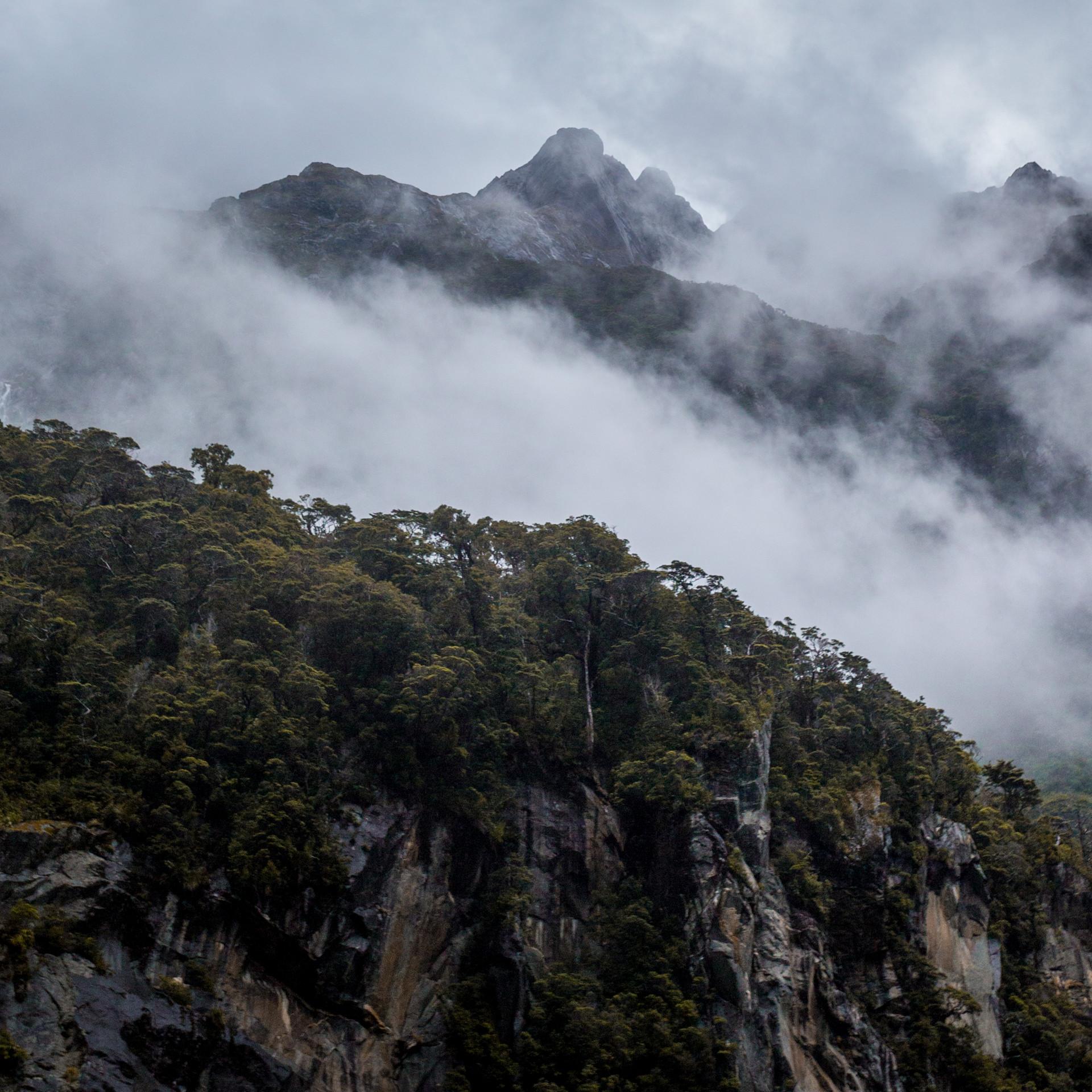 Rolling fog in New Zealand's Milford Sound wanderlust