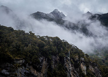 Rolling fog in New Zealand's Milford Sound wanderlust