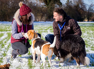 Dog owners and their pets in a snowy field