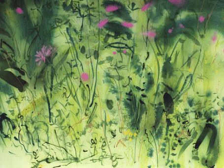 Meadow Portfolio 1