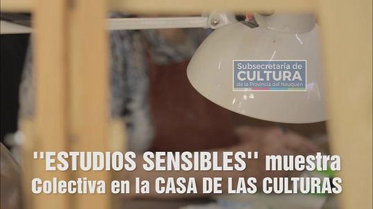 "Promo ""Estudios Sensibles"" Casa de las Culturas"