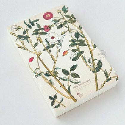 九口山 - 原創320page藥草系列白紙裸裝本 - 野薔薇