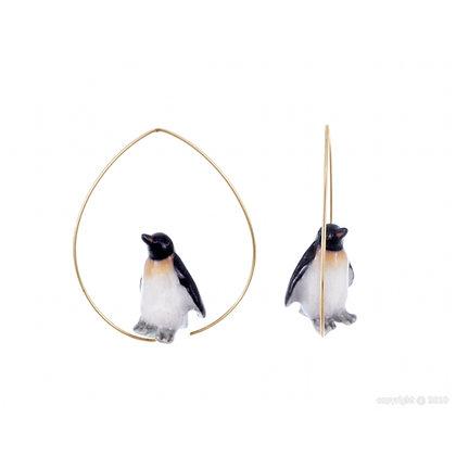 Nach - Creoles baby penguin