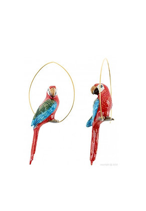 Nach - Creoles red parrot