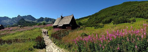 High Tatras valley.jpg