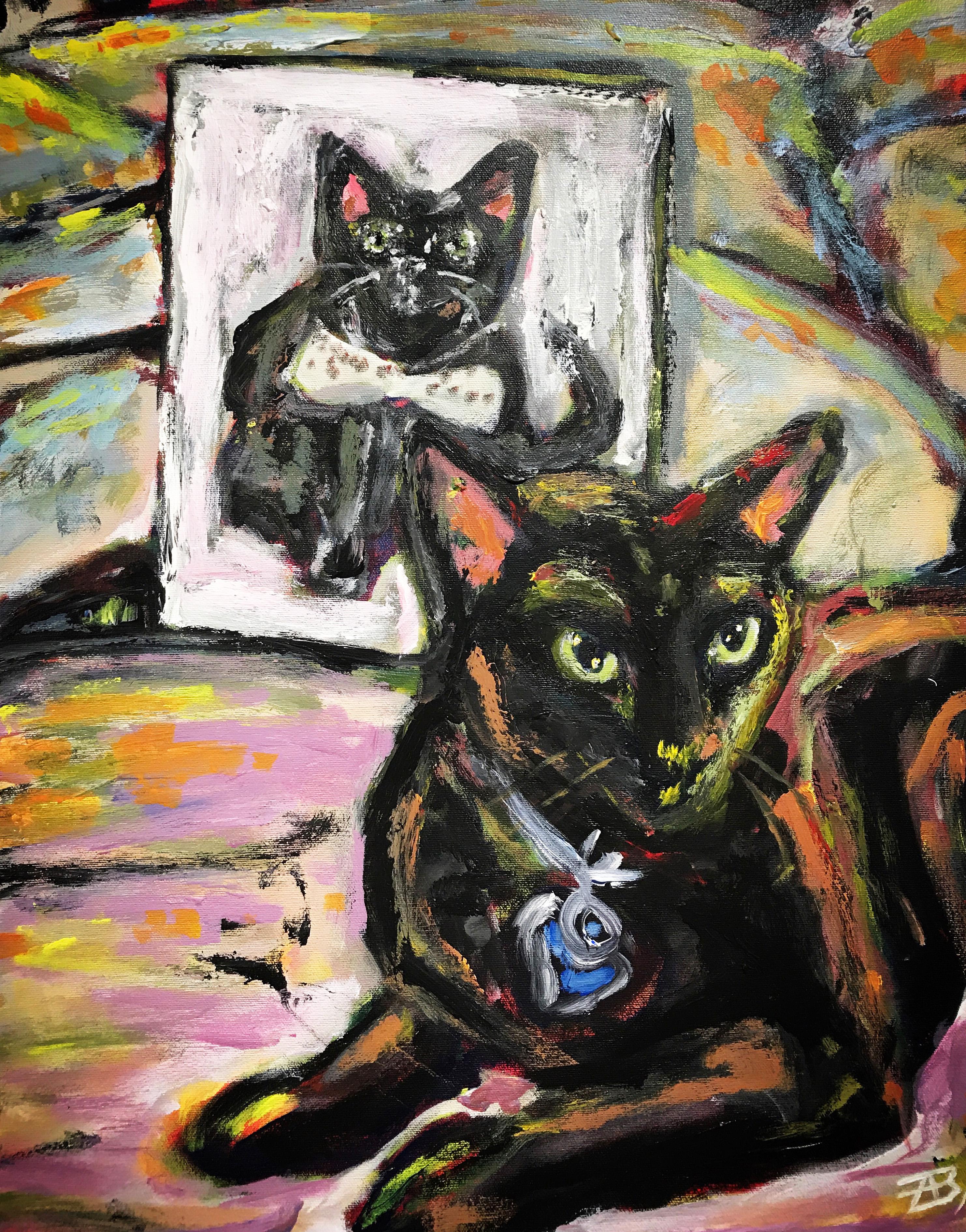Cat Portrait of a Cat with Portrait