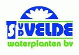 vd-Velde-Waterplanten-BV.jpg