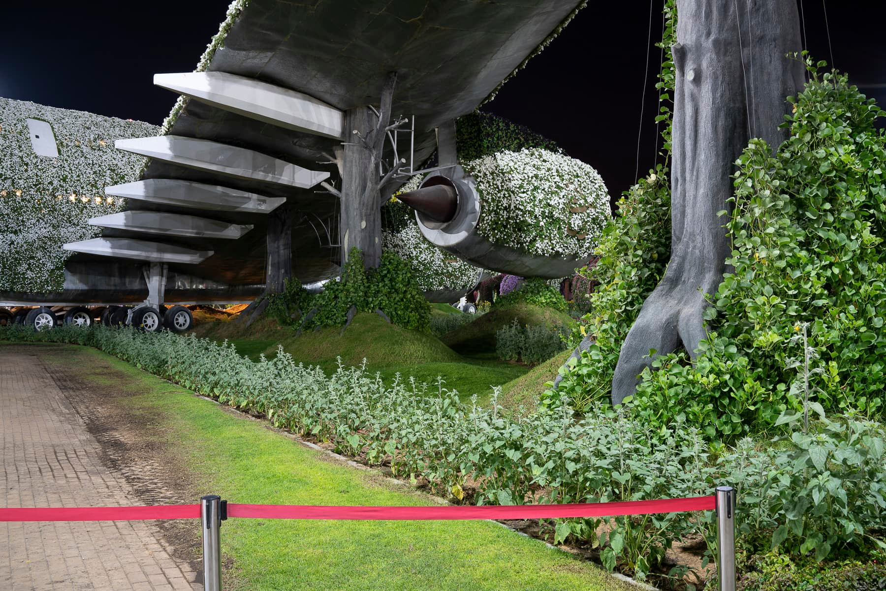 fabianschroder-in_natura-plane.jpg