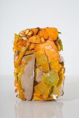 Rhea-Gupte-Visual-Artist-Compost-Install