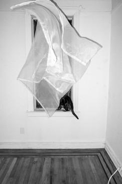 Martha Ormiston