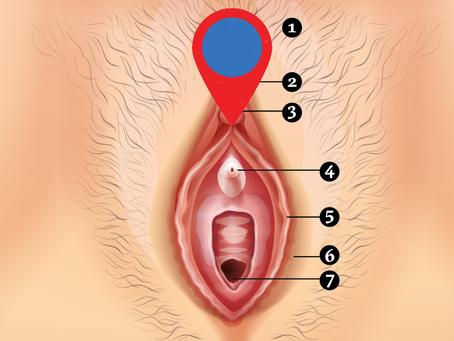 Mapa da Vulva
