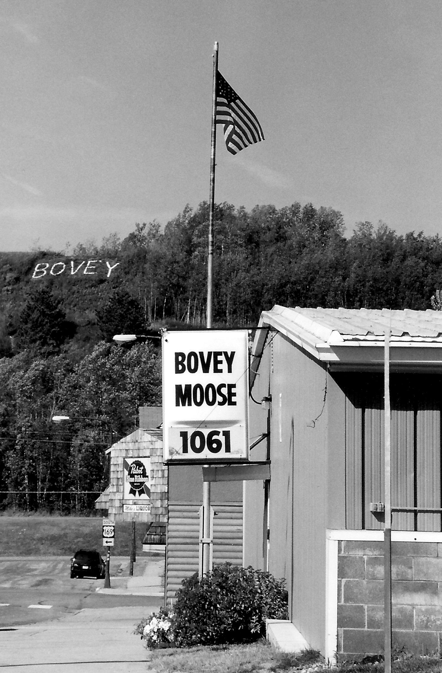 Bovey Moose