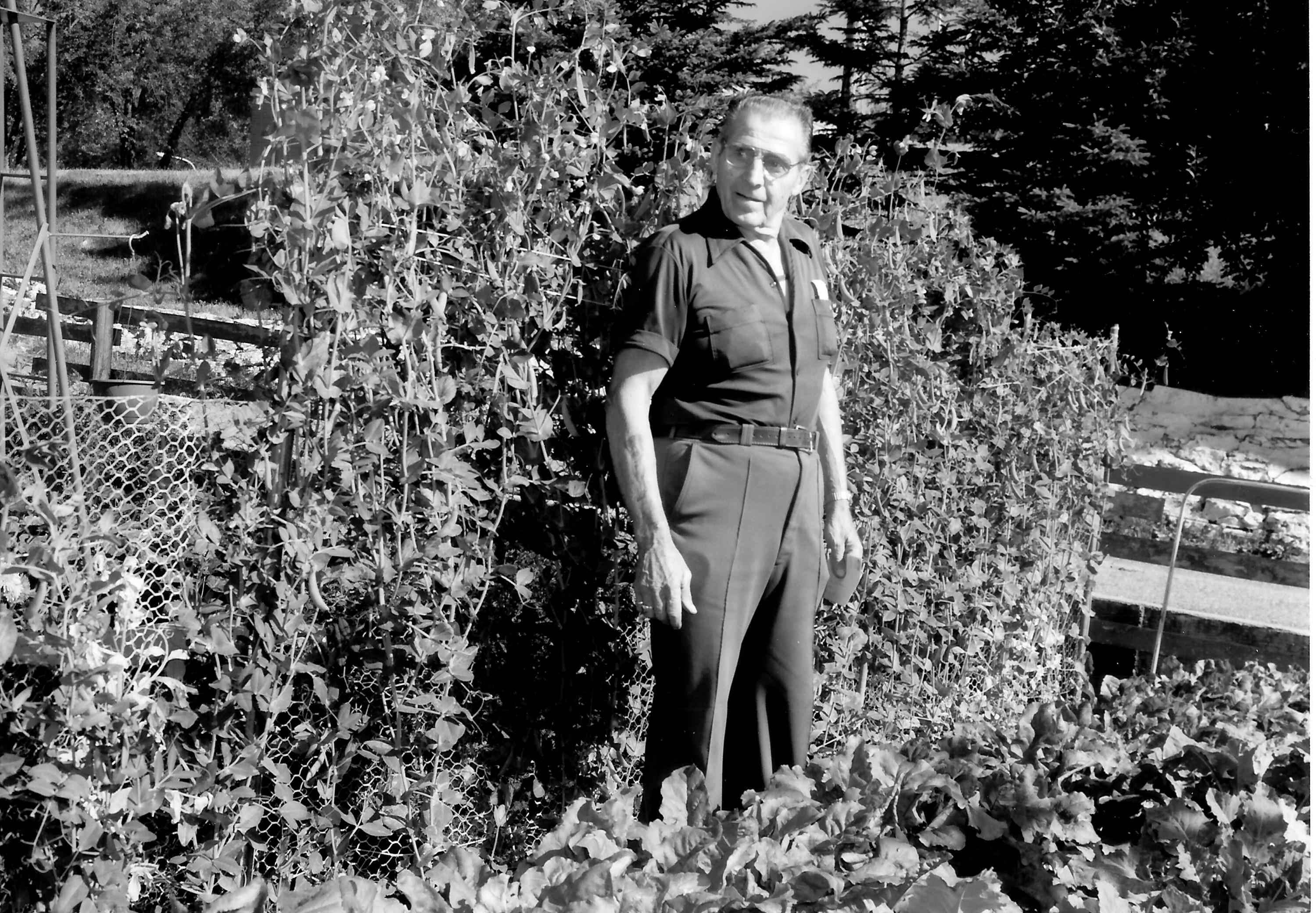 George Pavlica-Garden