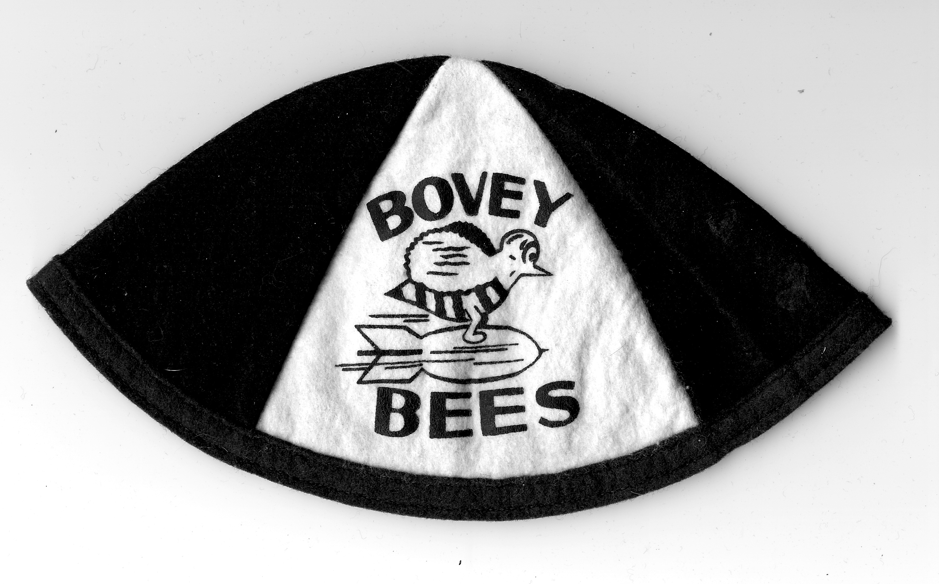Bovey Bees